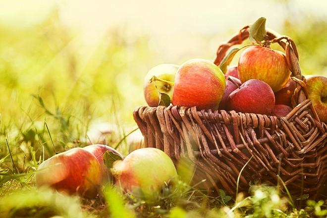 jablka pro zdraví